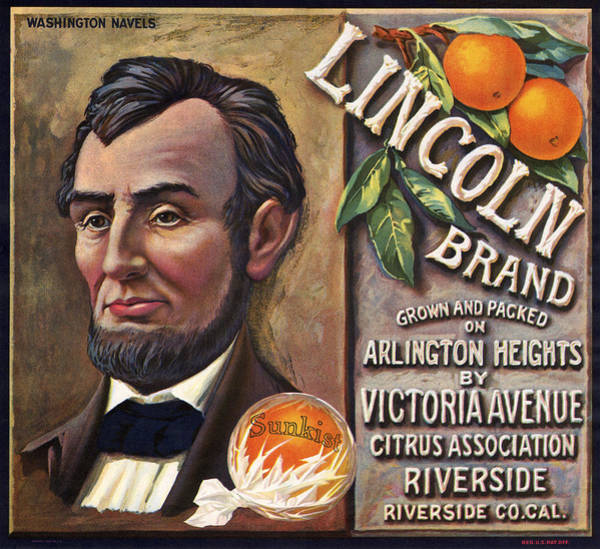 Wall Art - Photograph - Vintage Lincoln Brand Fruit Packing Label by Daniel Hagerman