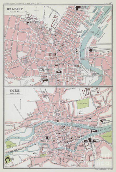 Drawing - Vintage Maps Of Belfast And Cork by English School