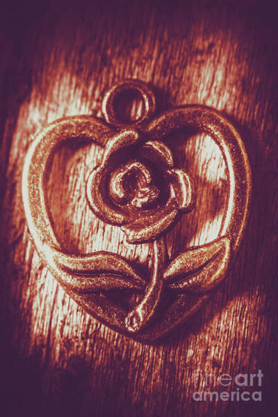 Wall Art - Photograph - Vintage Ornamental Rose by Jorgo Photography - Wall Art Gallery