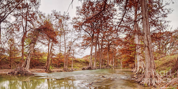 Photograph - Vintage Panorama Of Guadalupe River At James Kiehl Riverbend Park - Comfort Texas Hill Country by Silvio Ligutti