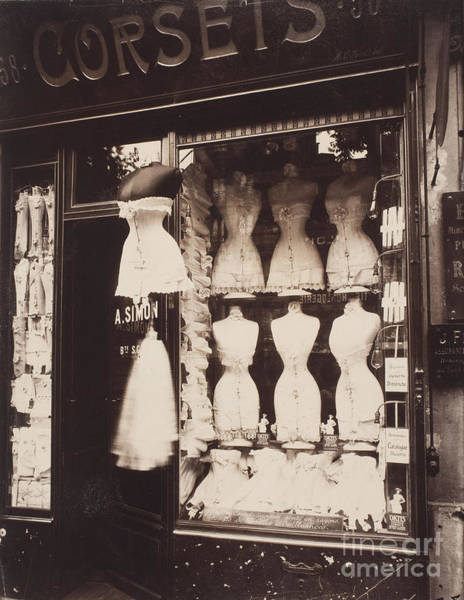 Corset Painting - Vintage Paris Corsets Ladies Fashion by Mindy Sommers