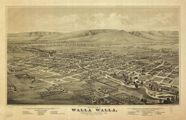 Wa Drawing - Vintage Pictorial Map Of Walla Walla Wa - 1876 by CartographyAssociates