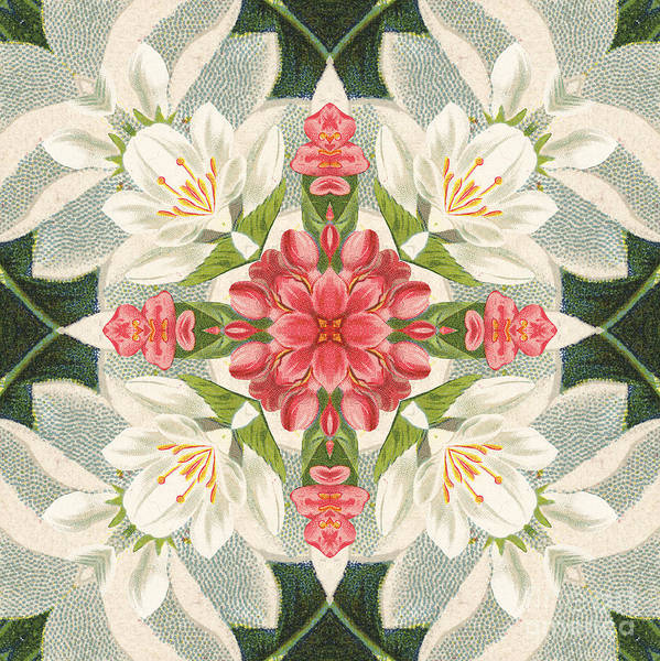 Wall Art - Digital Art - Vintage Pink And White Floral Pattern by Mary Machare