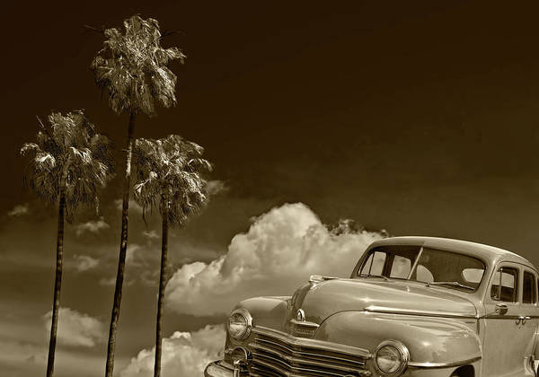 Photograph - Vintage Plymouth Automobile In Sepia Tone Against Palm Trees by Randall Nyhof