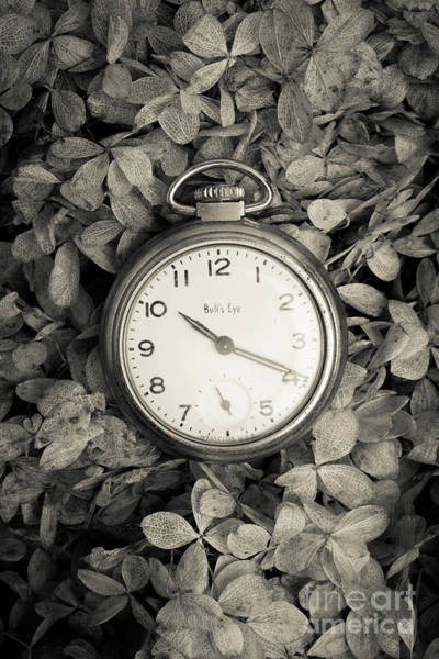 Wall Art - Photograph - Vintage Pocket Watch Over Flowers by Edward Fielding