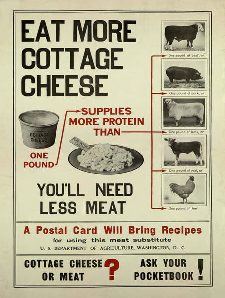 Protein Painting - Vintage Poster - Cottage Cheese by Vintage Images