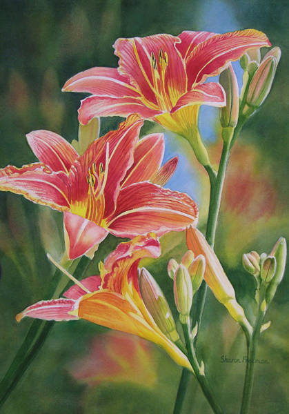 Lilies Wall Art - Painting - Vintage Red Orange Lilies by Sharon Freeman
