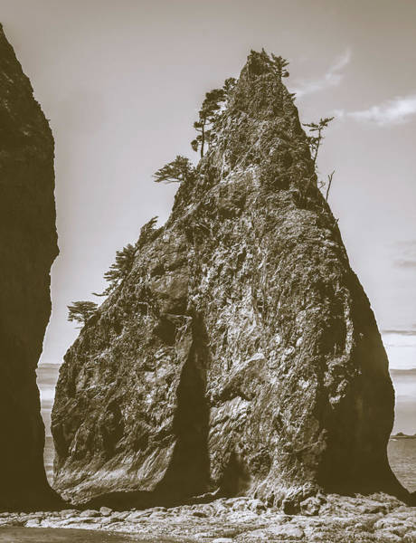 Photograph - Vintage Sea Stack by Dan Sproul