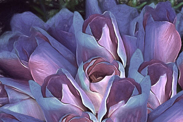 Digital Art - Vintage Still Life Bouquet - 2 by OLena Art Brand