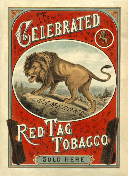 Photograph - Vintage Tobacco Ad 1890 by Andrew Fare