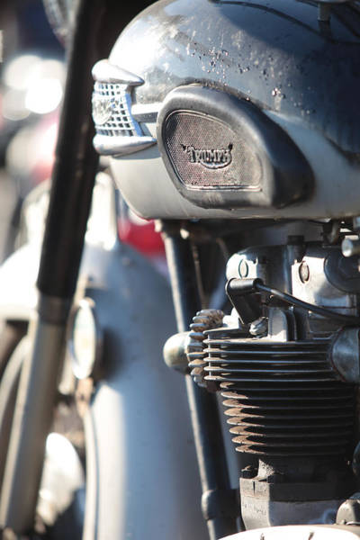 Photograph - Vintage Triumph by Keith May