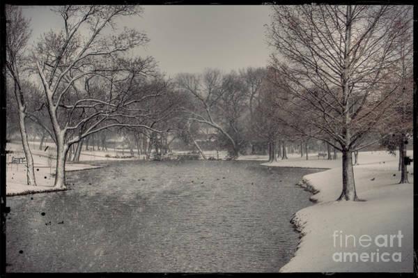 Photograph - Vintage Winter by Bill Hamilton