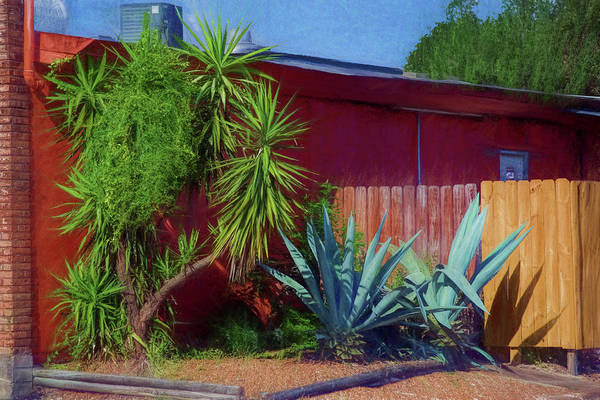 Otp Photograph - Vintage Yucca by Marshall Barth