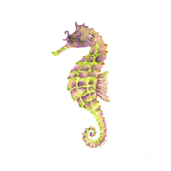 Painting - Violet Green Seahorse - Square by Amy Kirkpatrick