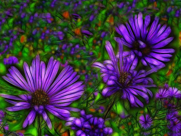 Fleur Digital Art - Violet Wildflowers by Jean-Marc Lacombe
