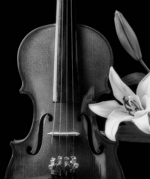 Bluegrass Photograph - Violin And Lily In Black And White by Garry Gay