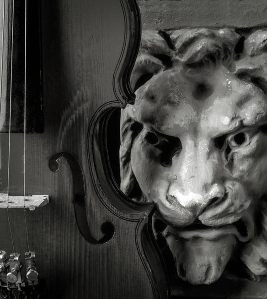 Bluegrass Photograph - Violin And Lion Face Black And White by Garry Gay