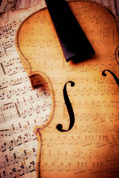 Frets Photograph - Violin And Musical Notes by Garry Gay