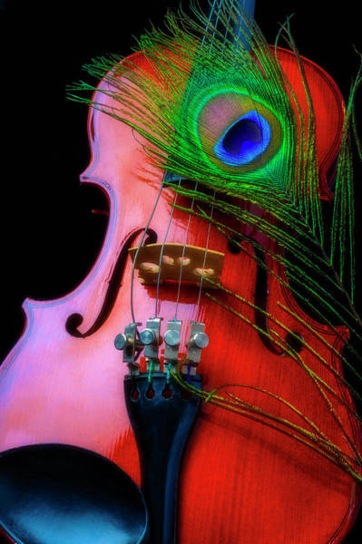 Wall Art - Photograph - Violin And Peacock Feather by Garry Gay