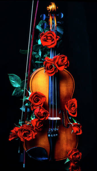 Wet Rose Wall Art - Photograph - Violin Covered In Roses by Garry Gay