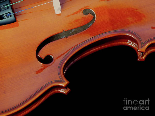 Photograph - Violin by Elle Arden Walby