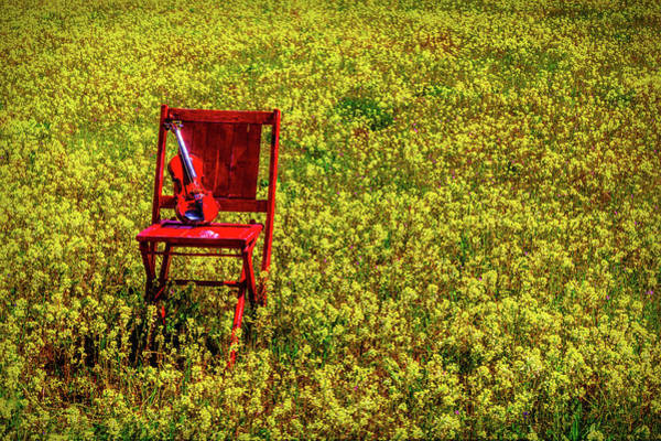 Wall Art - Photograph - Violin On Red Chair In Flowering Field by Garry Gay