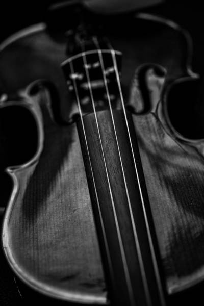 Photograph - Violin Portrait Music 10 Black White by David Haskett II