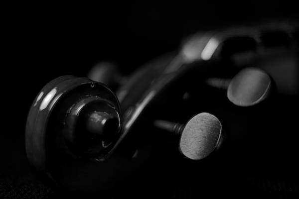 Photograph - Violin Portrait Music 15 Macro by David Haskett II