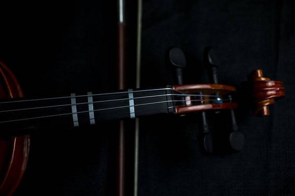 Photograph - Violin Portrait Music 2 by David Haskett II