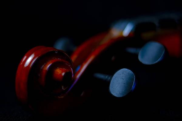 Photograph - Violin Portrait Music 20 Macro by David Haskett II