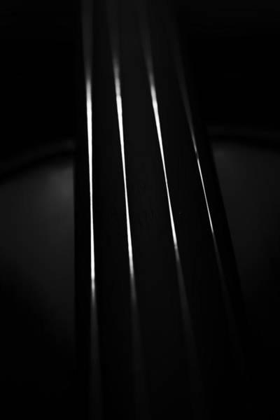 Photograph - Violin Portrait Music 27 Macro Black White by David Haskett II