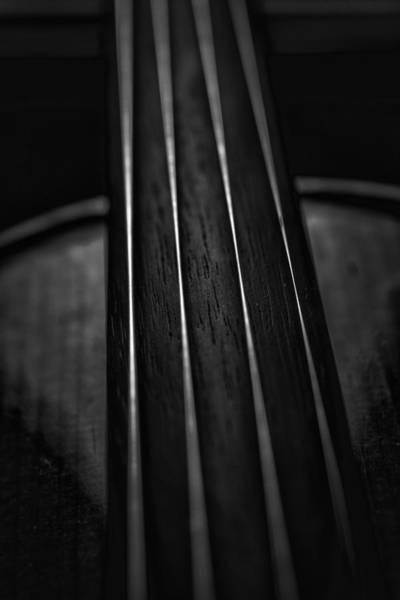 Photograph - Violin Portrait Music 28 Black White Macro by David Haskett II