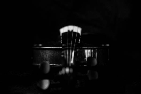 Photograph - Violin Portrait Music 6 Black White Macro by David Haskett II