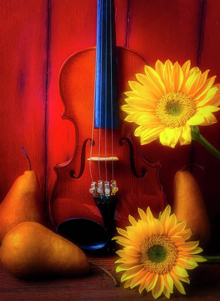 Wall Art - Photograph - Violin Sunflower And Pears by Garry Gay