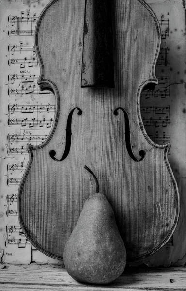 Wall Art - Photograph - Violin With Pear And Sheet Music by Garry Gay