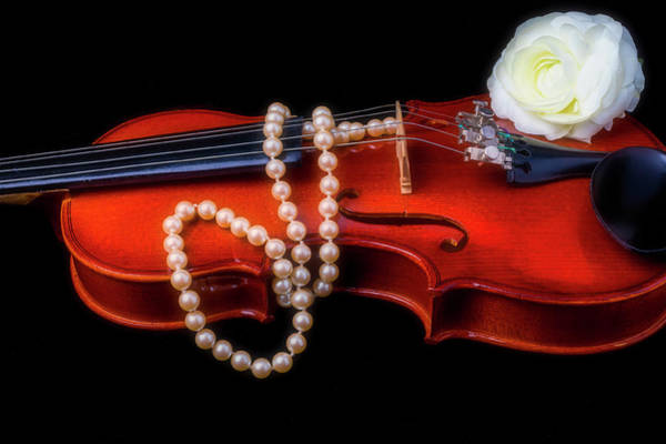 Bluegrass Photograph - Violin With Pearls by Garry Gay