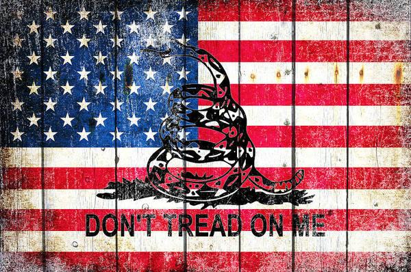 Viper On American Flag On Old Wood Planks Art Print