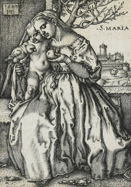 Madonna Drawing - Virgin And Child With A Parrot by Hans Sebald Beham