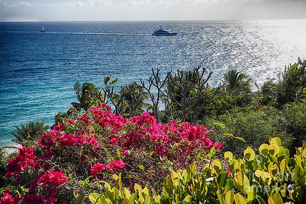 Wall Art - Photograph - Virgin Islands Coastal Vista by George Oze