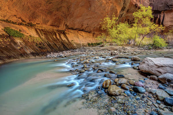 Photograph - Virgin Narrows Of Zion by Pierre Leclerc Photography