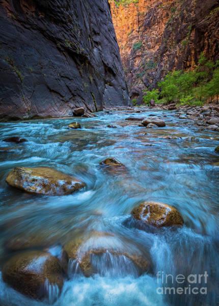 Photograph - Virgin River Rocks by Inge Johnsson