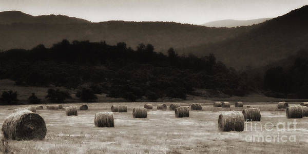 Photograph - Virginia Country Living by Thomas R Fletcher
