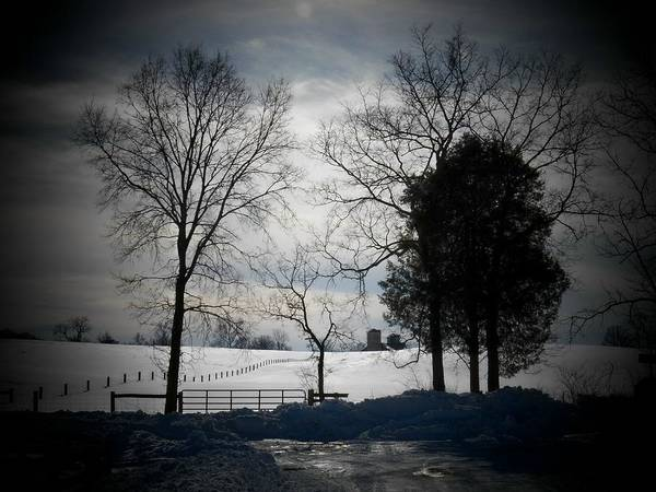 Wall Art - Photograph - Virginia Snow by Joyce Kimble Smith