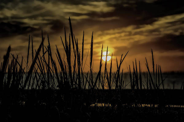 Photograph - Virginia Sunset 2 by Pete Federico