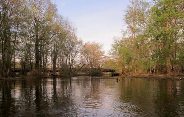 Photograph - Virginia Waterways 1 by Digital Art Cafe