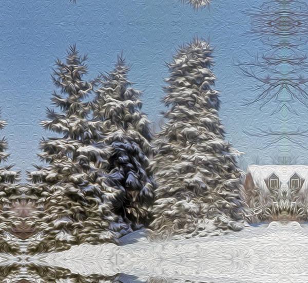 Photograph - Virginia Winter by Gene Norris