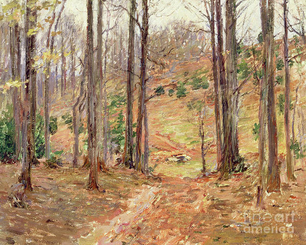 Backwoods Wall Art - Painting - Virginia Woods, 1893 by Theodore Robinson