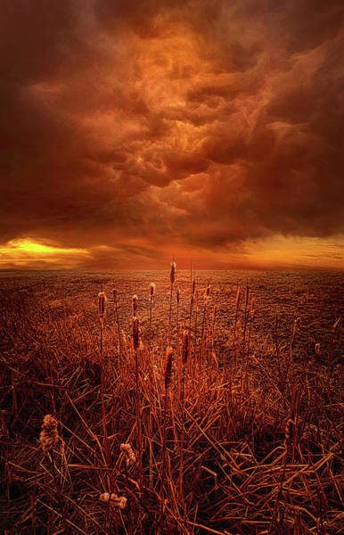 Photograph - Vision Softly Speaking by Phil Koch