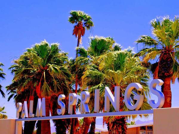 Palm Springs Photograph - Visitor Center Gateway 1 by Randall Weidner