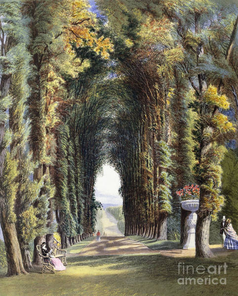 Park Avenue Wall Art - Painting - Vista In The Gardens Of Teddesley by E Adveno Brooke